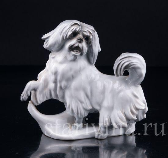 Антикварная старинная фарфоровая статуэтка Собака производства Karl Ens, Германия, 1920-30 гг.