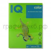 Бумага А4 IQ N42 весенняя листва 500л.