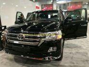 Вставка в решетку радиатора диодная для Toyota Land Cruiser 200 2015-