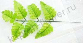 Веточка папоротника - 7 листьев