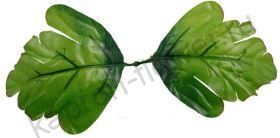 Листья пиона