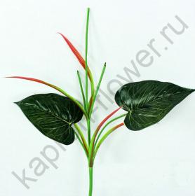 Стебель каллы с листьями
