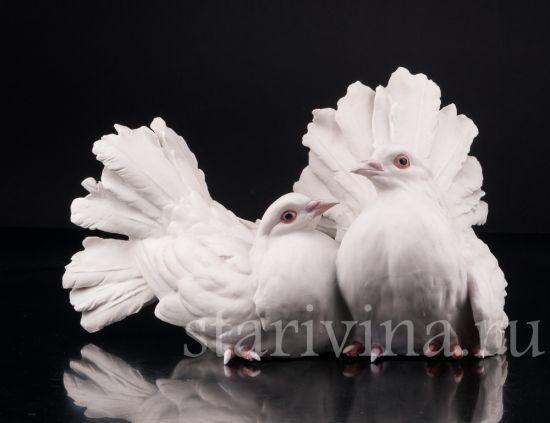Изображение Голубь и голубка, Tay, Италия, сер.20 в