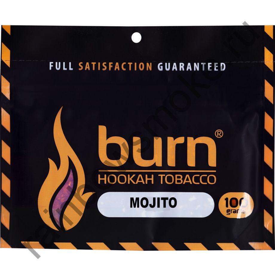 Burn 100 гр - Mojito (Мохито)