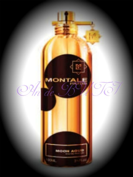 Montale Moon Aoud 100 ml edp