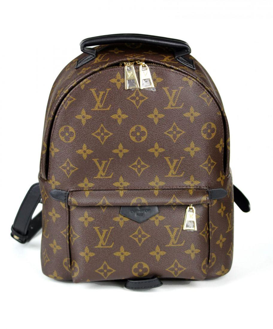 Рюкзак Louis Vuitton PALM SPRINGS PM