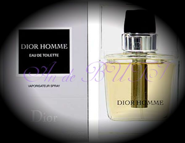 Christian Dior Dior Homme 100 ml edt