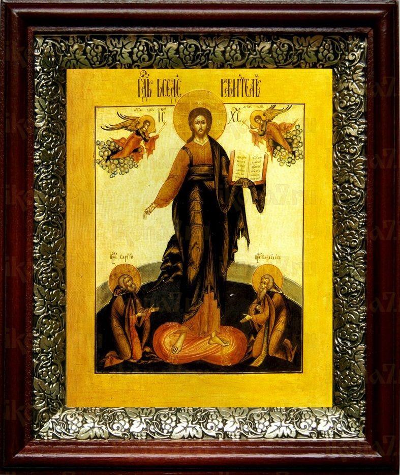 Спас Смоленский (19х22), темный киот