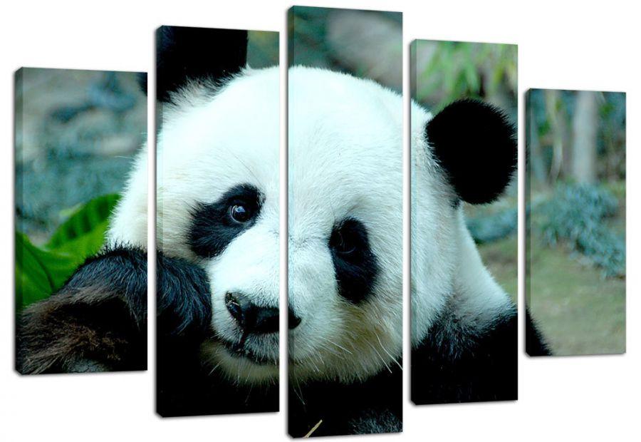 Модульная картина Панда - под заказ