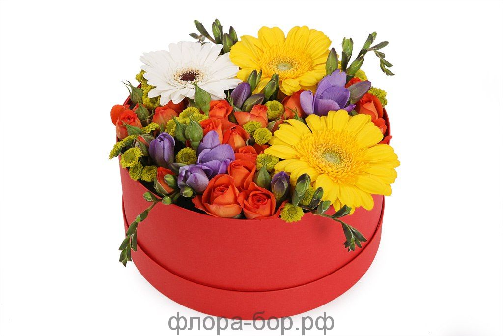 """Цветы в коробке """"Клумба"""""""