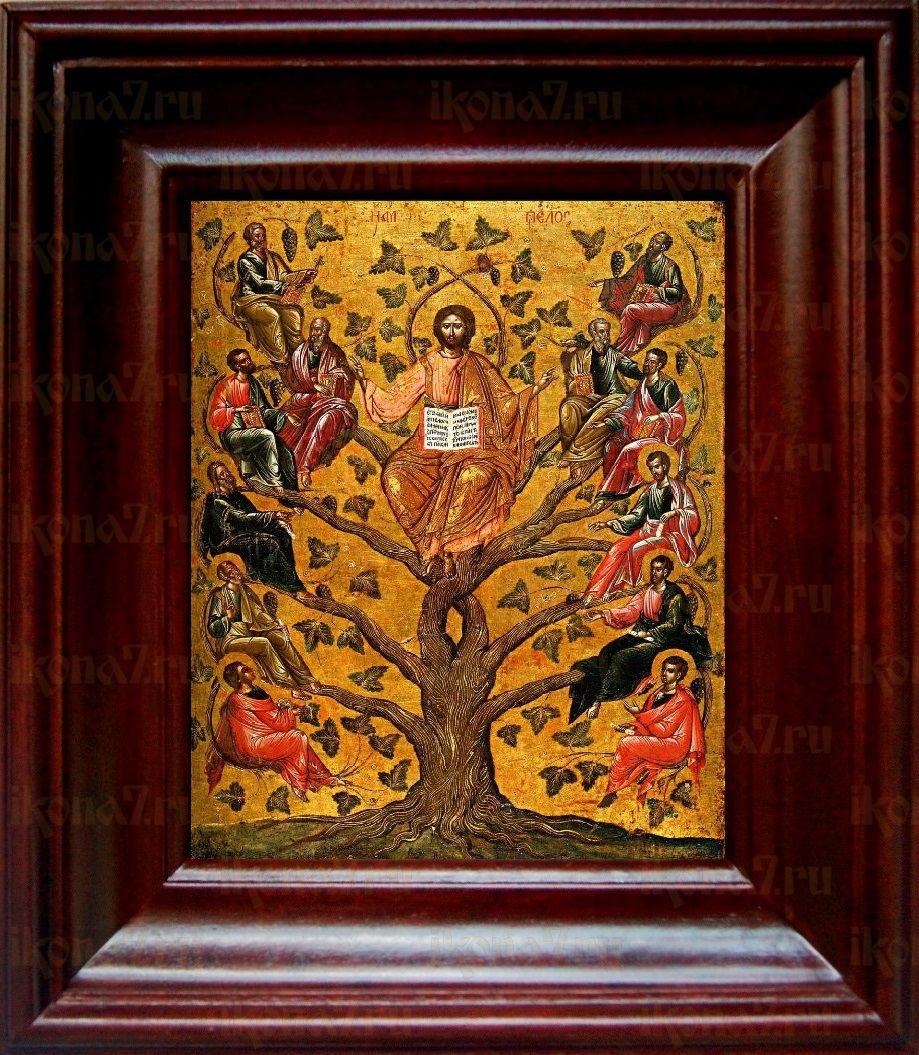 Древо Жизни (Виноградная Лоза) (21х24), простой киот