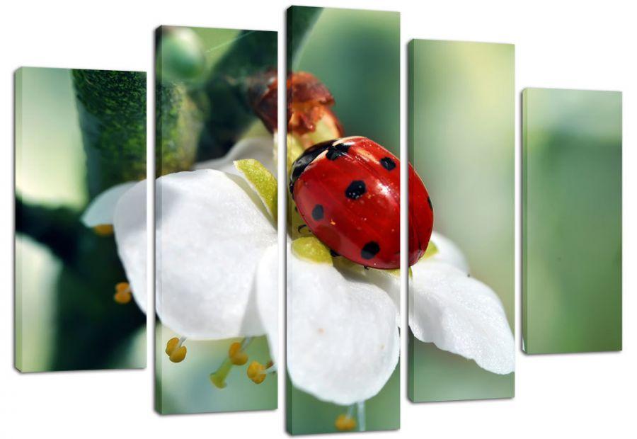 Модульная картина Божья коровка на цветке