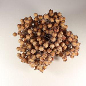 `Ягоды в сахарной обсыпке 12 мм (длина 16см), цвет коричневый, 1 веточка=2 ягодки
