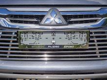 Рамки номерного знака, ТСС, c логотипом, сталь, пара