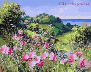 Картина по номерам Цветочное поле Y0414