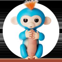 Finger monkey Борис купить с доставкой