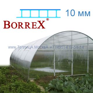 Теплица Фермер 5.6 х 10 с поликарбонатом 10 мм BorreX