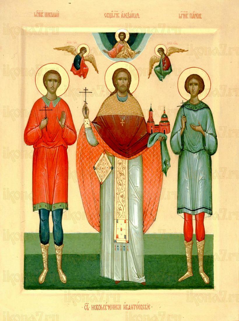 Икона Александр Ивантеевский