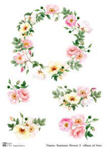 Summer flower 5