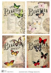 Vintage insects 6