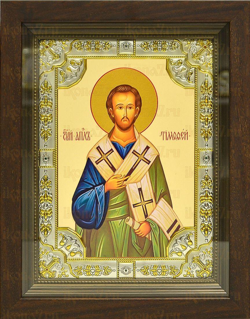 Тимофей, апостол (24х30), серебро