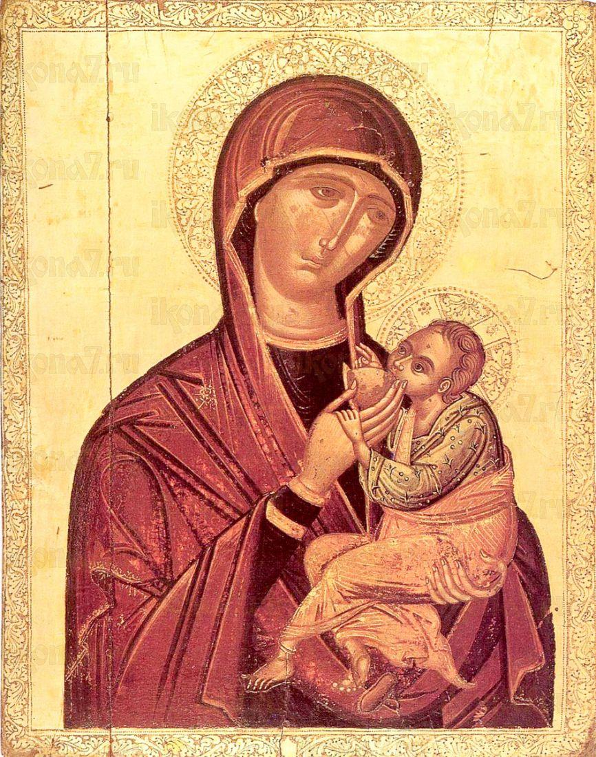 Икона Млекопитательница икона Божией Матери (копия старинной)
