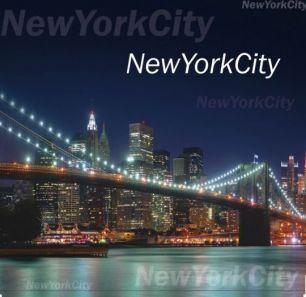 "Пакет с петл. ручкой  40*40 см ""New York""  25 шт. 95 мкм"