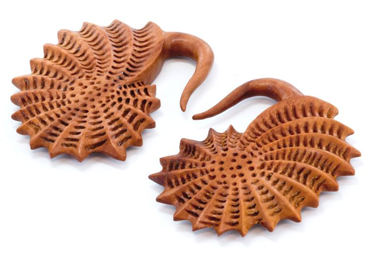 Крюки - морская раковина. Красное дерево