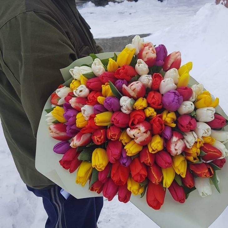 101 микс тюльпан