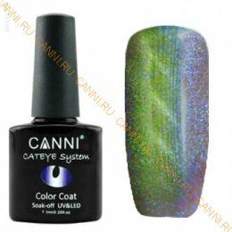 Гель-лак CANNI Cat Eye Магнитный гель-лак 452