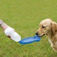 Дорожная поилка для собак