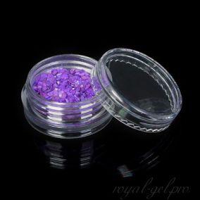 Ракушечник цвет фиолетовый