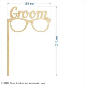 `Топпер ''Очки Groom для фото'', размер: 153*245 мм, фанера 4 мм