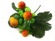 Букет ягод брусники декоративный