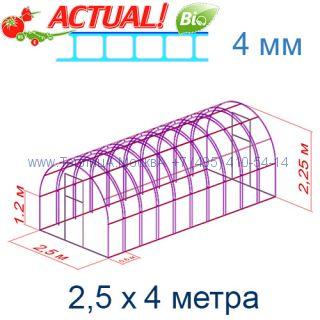 Теплица Богатырь Люкс 2,5 х 4 с поликарбонатом 4 мм Актуаль BIO