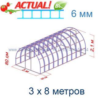 Теплица Богатырь Люкс 3 х 8 с поликарбонатом 6 мм Актуаль BIO