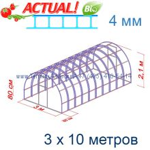 Теплица Богатырь Цинк 3 х 10 с поликарбонатом 6 мм Polygal