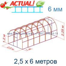 Теплица Кремлевская Люкс 2,5 х 6 с поликарбонатом 6 мм Актуаль BIO
