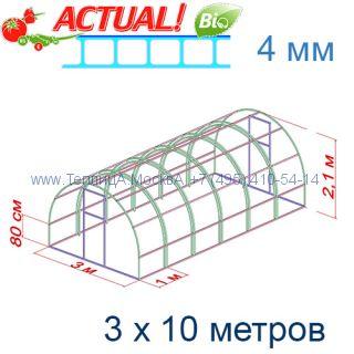 Теплица Кремлевская Люкс 3 х 10 с поликарбонатом 4 мм Актуаль BIO