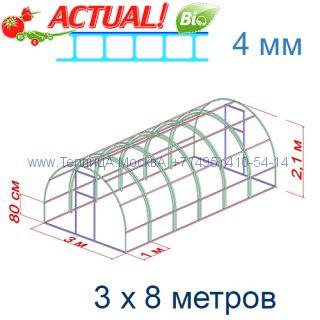 Теплица Кремлевская Люкс 3 х 8 с поликарбонатом 4 мм Актуаль BIO