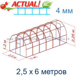 Теплица Кремлевская Премиум 2,5 х 6 с поликарбонатом 4 мм Актуаль BIO