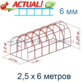 Теплица Кремлевская Премиум 2,5 х 6 с поликарбонатом 6 мм Актуаль BIO