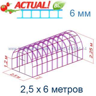 Теплица Богатырь Премиум 2,5 х 6 с поликарбонатом 6 мм Актуаль BIO