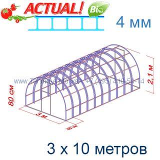 Теплица Богатырь Премиум 3 х 10 с поликарбонатом 4 мм Актуаль BIO