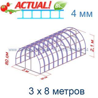Теплица Богатырь Премиум 3 х 8 с поликарбонатом 4 мм Актуаль BIO