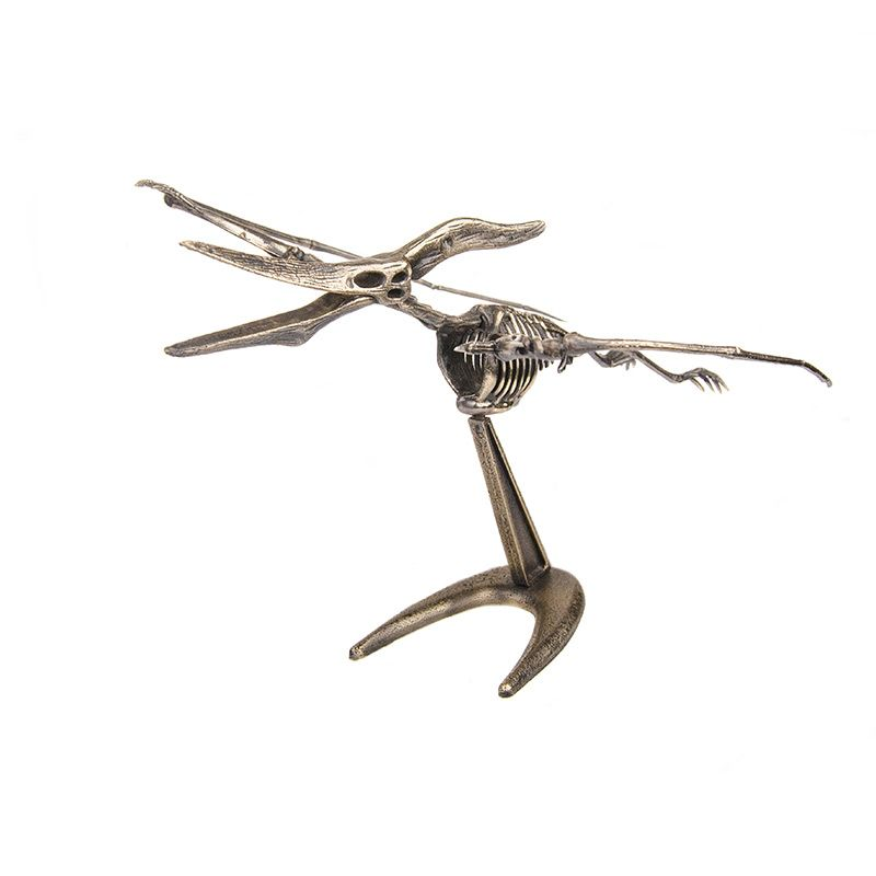 """Скелет """"Птеранодон"""""""