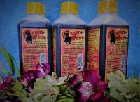 Растительный сироп-бальзам от сухого и аллергического кашля 1л. Богатырские корма