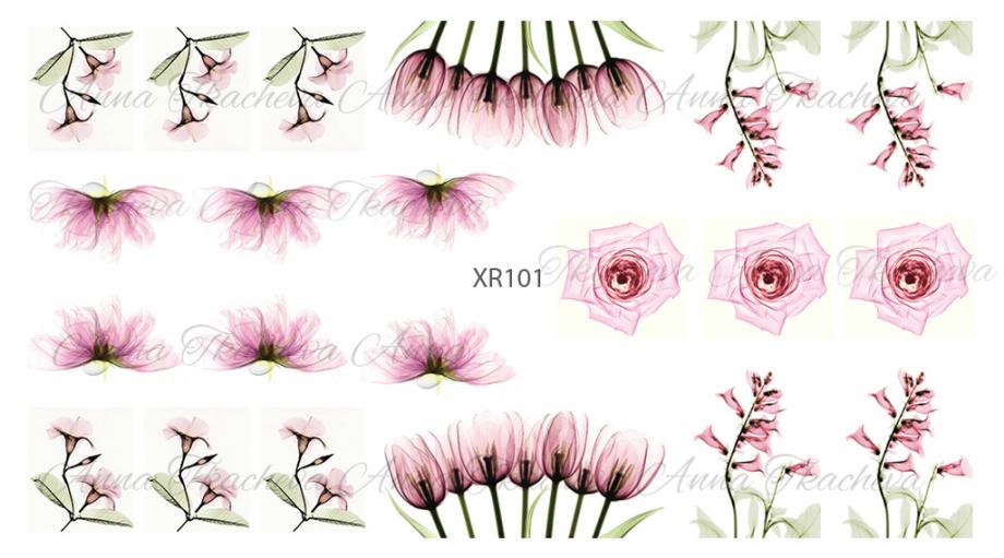 Слайдер-дизайн Anna Tkacheva XR101