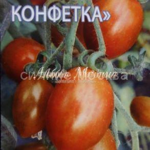 Томат Шоколадная конфетка (томаты-фрукты)