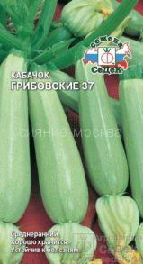 Кабачок Грибовские 37 (Седек)